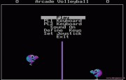 Arcade Volleyball title