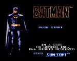 Batman - The Video Game titlee